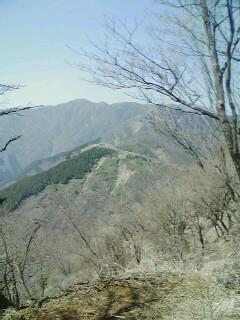 Tanzawa